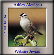 Ashley Alquine Website Award