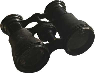 A picturesque pair of antique opera glasses