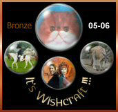 It's Wishcraft Bronze Award