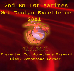 2nd Bn 1st Marines Web Design Excellence